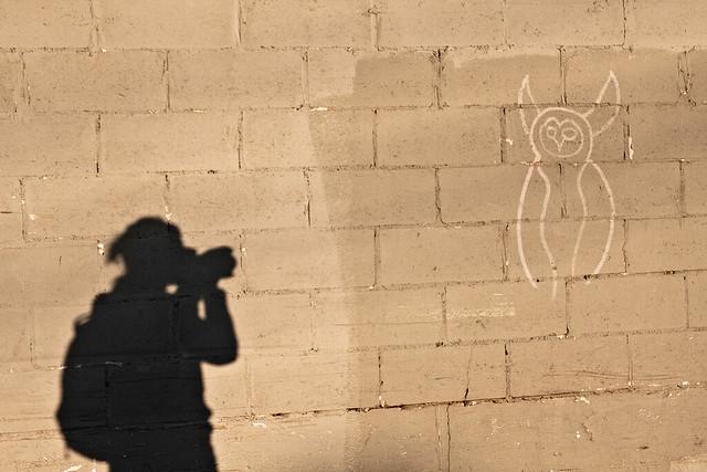 Shadow Shot