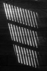 narrow (aimeeern) Tags: blackandwhite bw canon rebel pattern blinds narrow xti ourdailychallenge