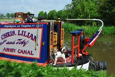 Canal boat terrier - is he Rueben or Toby?