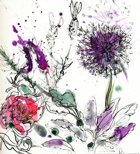 My garden: peony, allium, lavender in light rain