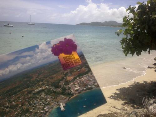 Tarjeta Postal De Vieques