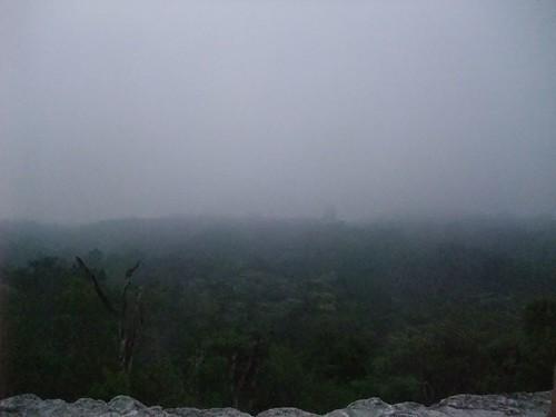 Tikal 107