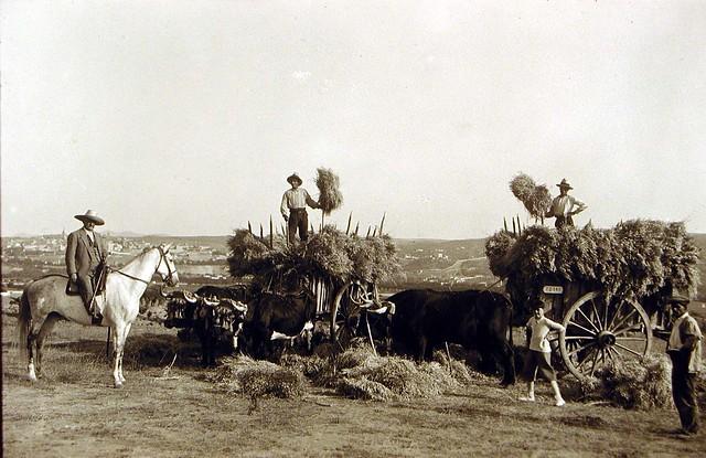 El Conde de Romanones supervisando las tareas agrícolas en su finca del Cigarral de Buenavista en Toledo