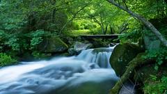 Deep in the forest (AkheL) Tags: wood bridge green water japan forest lumix waterfall moss highlands rapids panasonic nagano chino suwa tateshina