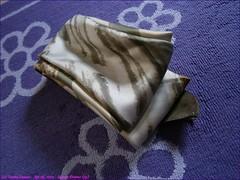 359TC_Scarves_Dreams_(33)_Apr05,2014_2560x1920_4050472_sizedflickR (terence14141414) Tags: scarf silk dreams gag foulard soie gagging esarp scarvesdreams