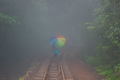 Matheran-4846 (Satish Chelluri) Tags: satishchelluri satishchelluriphotography matheran maharastra umbrella mansoon