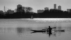 Kralingse Plas, Rotterdam (Gerard de Boer) Tags: blackandwhite rotterdam kayak kano zeilboot kralingseplas