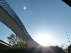 walking down (simbiosc) Tags: bridge sol contraluz puente lumix farola arboles panasonic resplandor fz100 snappybooksol