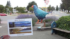 New Zealand Southern Lakes Postcard + Takahē