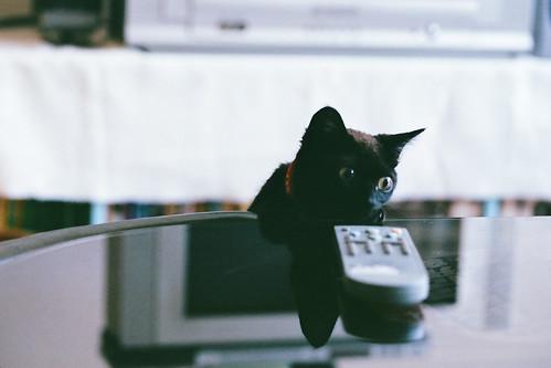 我要看電視!!