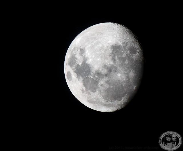 Singapore Moon