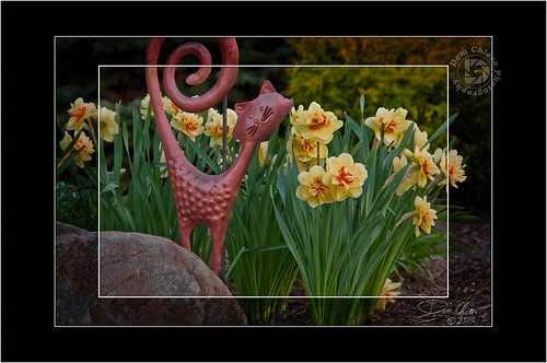 """Ahhh! Spring"""