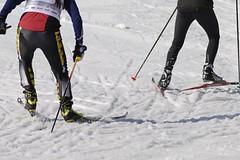 Tour de Barents – Češi nechybí na posledním lyžařském mazání