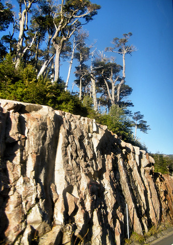 Rocky Cliff with Trees by katiemetz, on Flickr