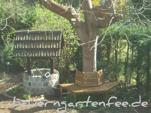 Die Baumbank am Walnussbaum