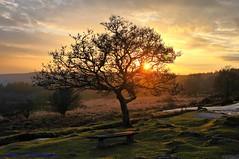 Cross Gate Sunset. Burrator.Dartmoor. (spw6156 - Over 4,880,054 Views) Tags: sunset gate cross no steve  waterhouse explored 400hdr burratordartmooriso filterscopyright
