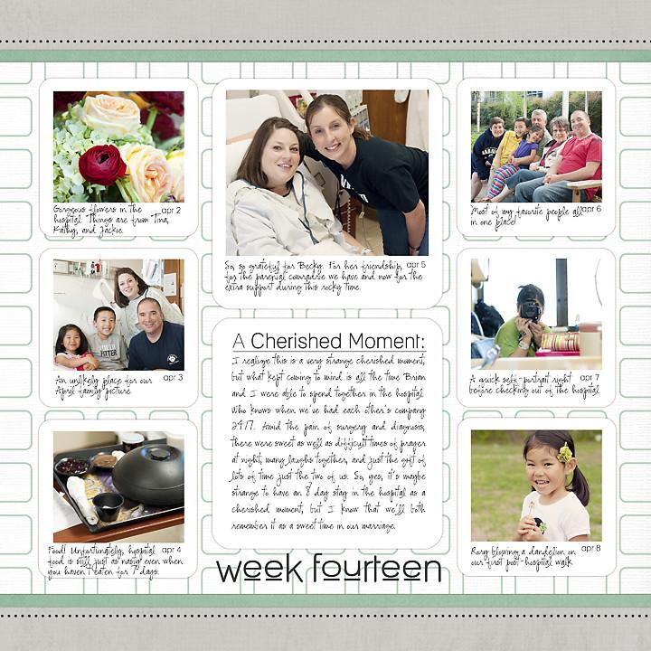 2011_week14 web