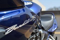 Suzuki GSF Bandit 1200-s (Logo) (Luc de Hoogh) Tags: 2001 suzuki bandit gsf 1200s