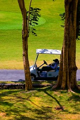 My Ride (9970) (TheHouseKeeper) Tags: trees grass golf fun highlands philippines greens golfcourse mateo golfcart tagaytay cavite caddy tagaytayhighlands pilipinas midlands tagaytaycity thehousekeeper tagaytaymidlands teampilipinas flickristasindios georgemateo