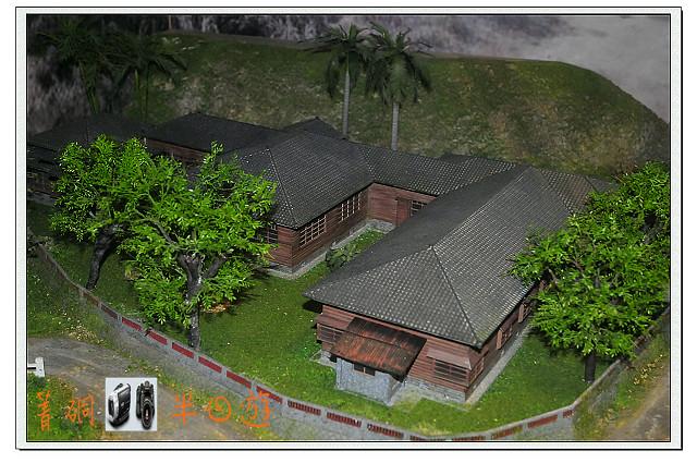 DSC_1113