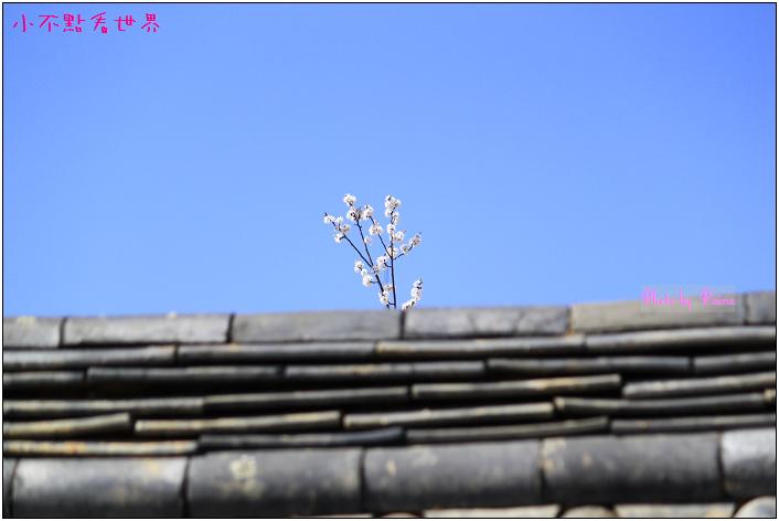 三清洞詩意 (33).jpg