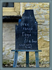 633. With love ..... (fleetingglances) Tags: wales farmhouse chalk board easel freerangeeggs