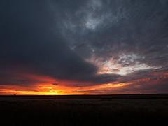 Sonnenuntergang an der Polentswa Pan Botswana (jaffles) Tags: nature pen landscape nationalpark sonnenuntergang natur olympus afrika botswana landschaft kalahari ep2 kgalagadi
