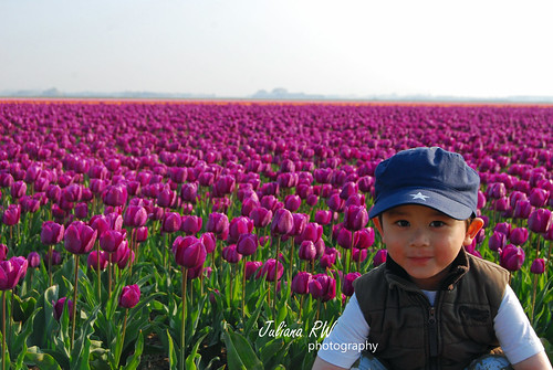 Jason in tulips field