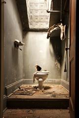porcelain god. (stevenbley) Tags: urban ny newyork abandoned hotel ancient rust bokeh furniture decay exploring urbanexploration grime peelingpaint breeze decayed urbanexploring timewarp urbex sneak shagcarpeting canon50d guerillahistorian