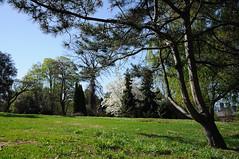 Botanic Garden (zobl_vie) Tags: oslo hage botaniske tyenhagen universitetes