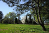 Botanic Garden (zobl_vie) Tags: oslo hage botaniske tøyenhagen universitetes
