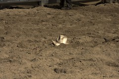 IMG_8955 (indy turtle) Tags: hat brisbanemeetup daybororodeo