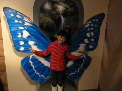 蝶になってみたり