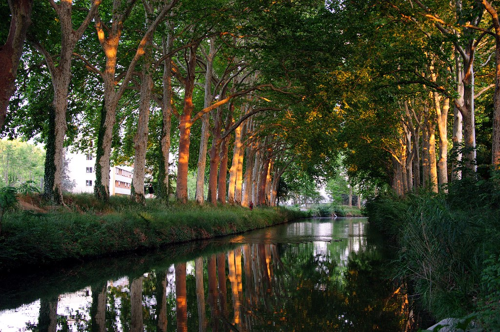 Sunset on Canal du Midi, Toulouse
