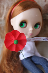 A Memorial Day Poppy