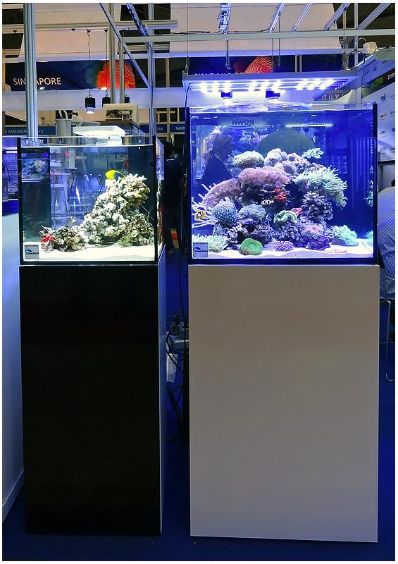 Aquarama_2011-014