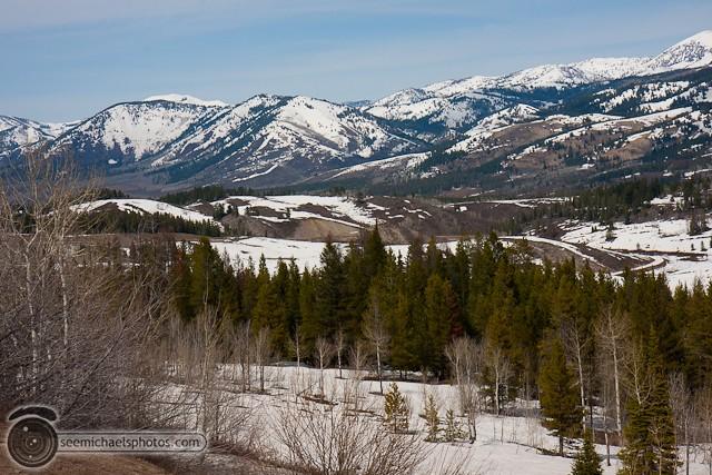 Yellowstone Day 1 52611 © Michael Klayman-003