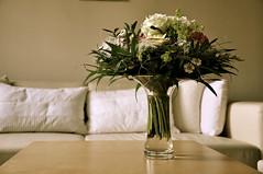 vase (Ramona Huber) Tags: stilllife flower stillleben vase bouquet blumenstrauss