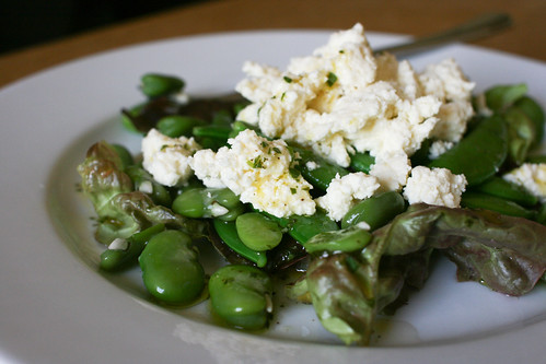 Fresh ricotta and broad bean salad