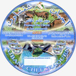 fromage de chèvre de chefchaouen