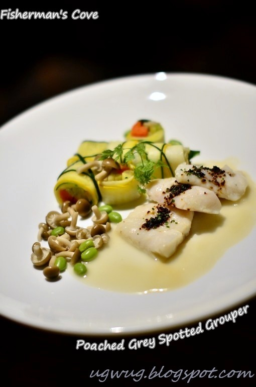 Poached Grey Spotted Grouper
