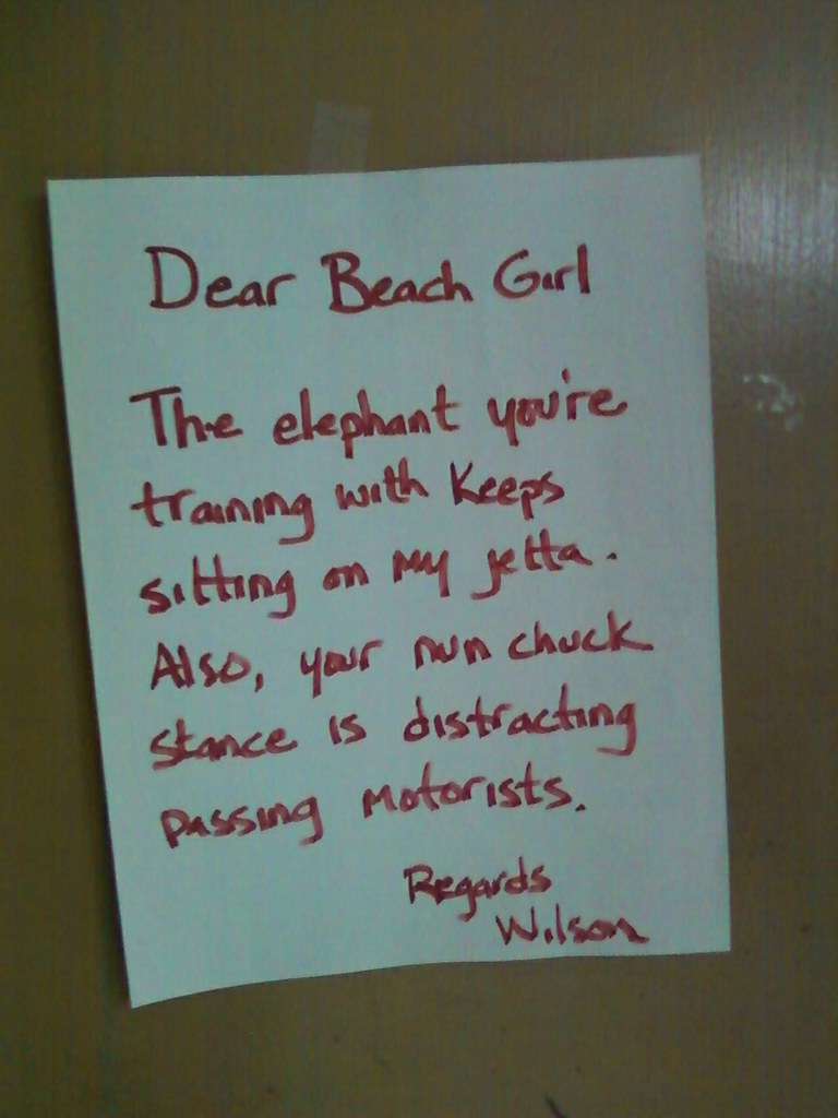 Dear Beach Girl, The elephant you're training keeps sitting on my Jetta. Also, your nunchuck stance is distracting passing motorists. Regards, Wilson