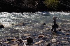 DSC_6564 (AmitShah) Tags: banff canada nationalpark