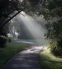 Morning Fog (Billy Wilson Photography) Tags: ontario river saultstemarie stmarysriver