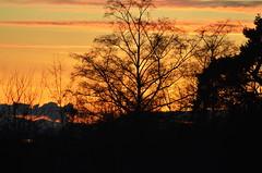 Sunset 1 (glenbodie) Tags: glen bodie glenbodie reifel
