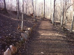 Rock Wall Trail