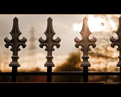 Fence (JLM Photography.) Tags: light graveyard metal fence gate metallic churchyard railings flickrchallengegroup flickrchallengewinner ourdailychallenge