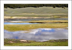 Hayden Valley, Yellowstone River (mark willocks) Tags: green clouds nationalpark yellowstone wyoming yellowstoneriver haydenvalley nikond90