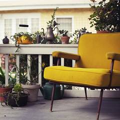 porch finds (jasfitz) Tags: home vintage sandiego gardening retro cutting teapots buckets frontporch succulents coffeepots potting thrifted thriftstorefinds normalheights sliceofmylife midcenturychair antiquegoodies