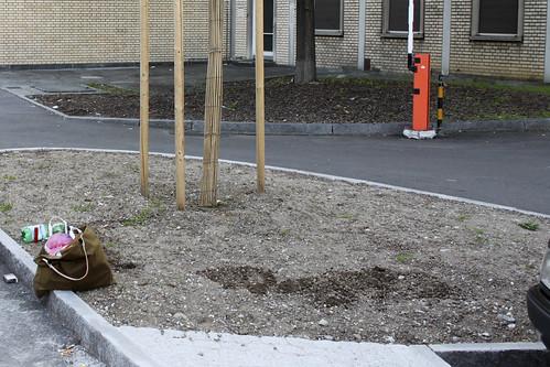 Angepflanzt Baumscheibe Escher Wyss Platz